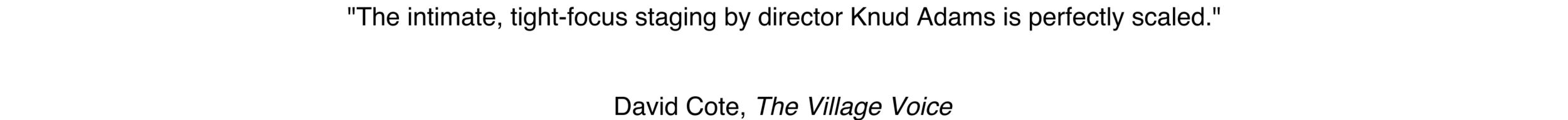 Village Voice 1.png