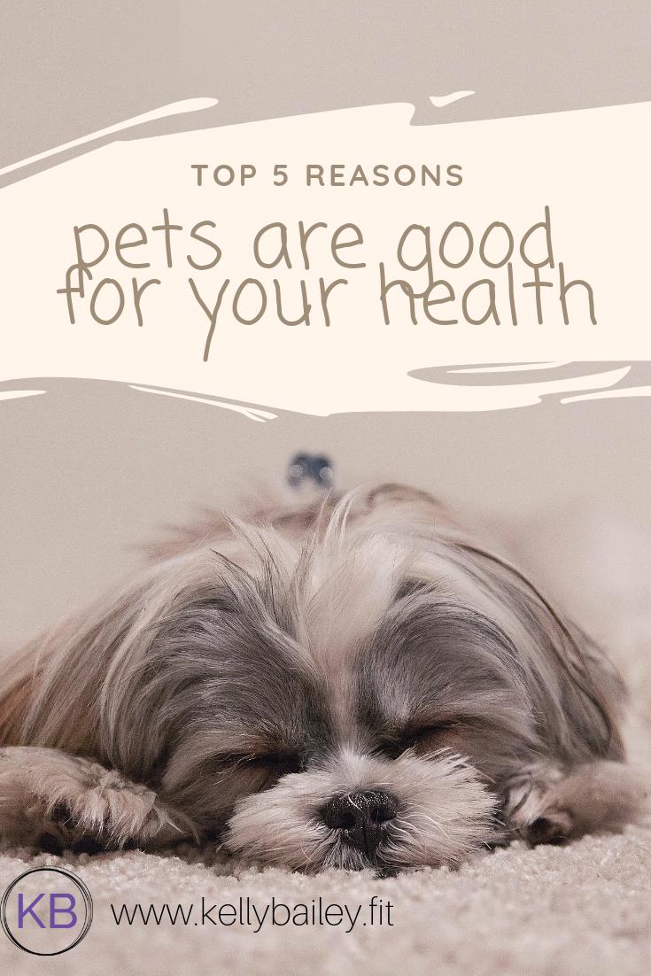 Top 5 reasons.png
