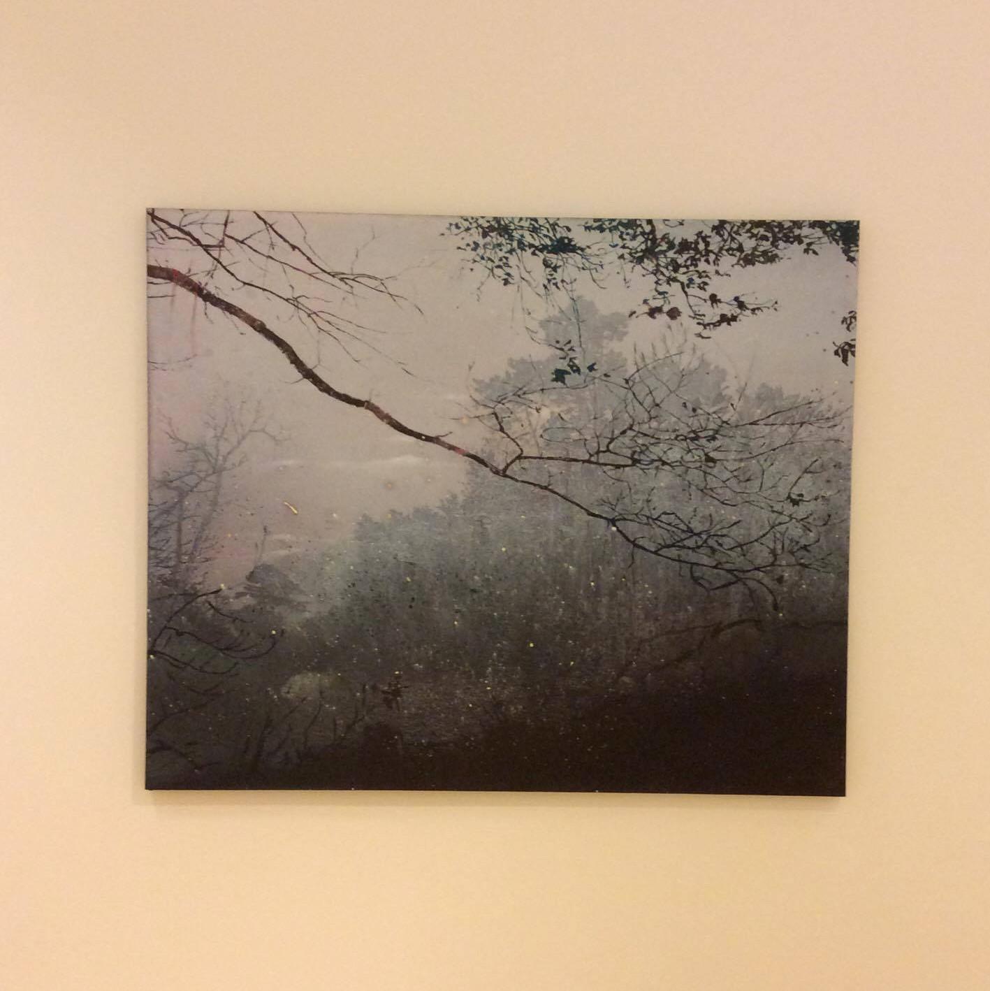 Elizabeth Magill,  Grayscale (2), 2005.