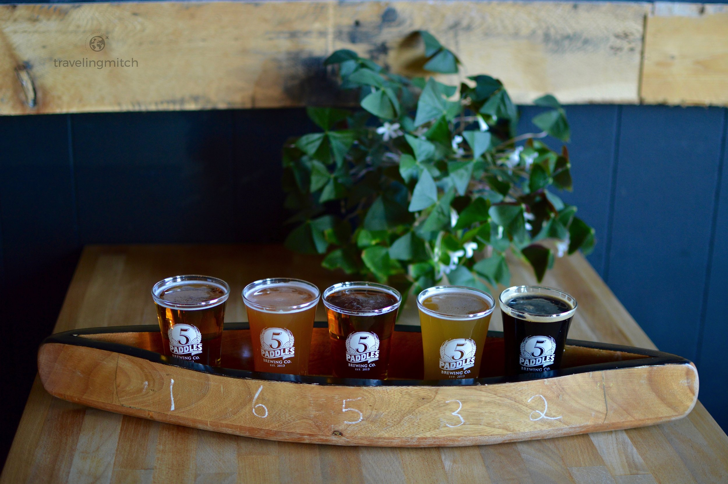 At the 5 Paddles Brewing Co. in Whitby, Ontario. From left tor right - Home Sweet Home, Strawberry Wheat, Italian Backyard, Skull Pucker, and Valley of Darkness