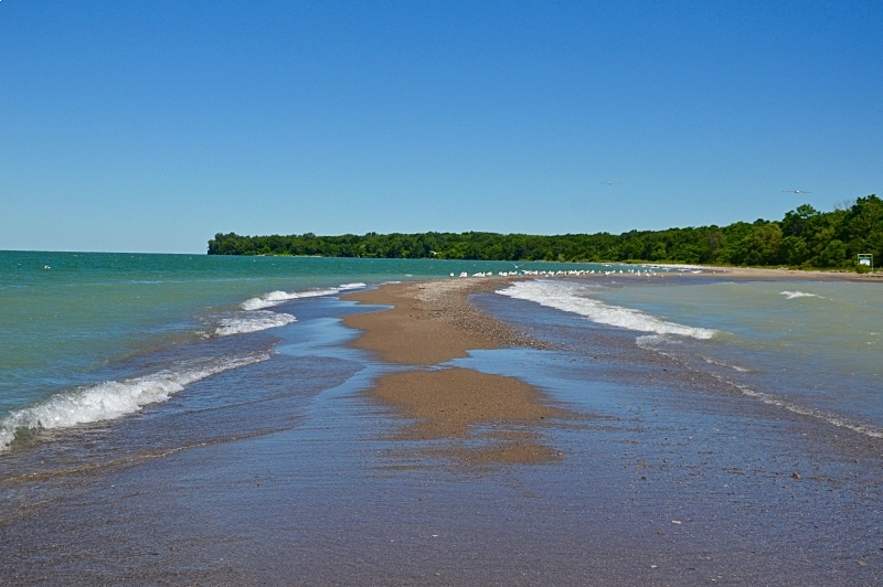 Fish Point - Point Pelee