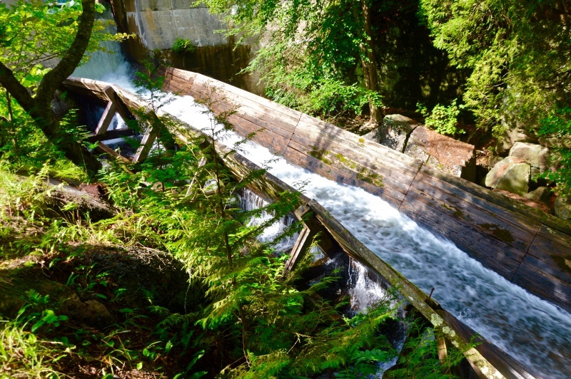 Visiting the Hawk Lake Log Chute is something you must experience in the Highlands of Ontario
