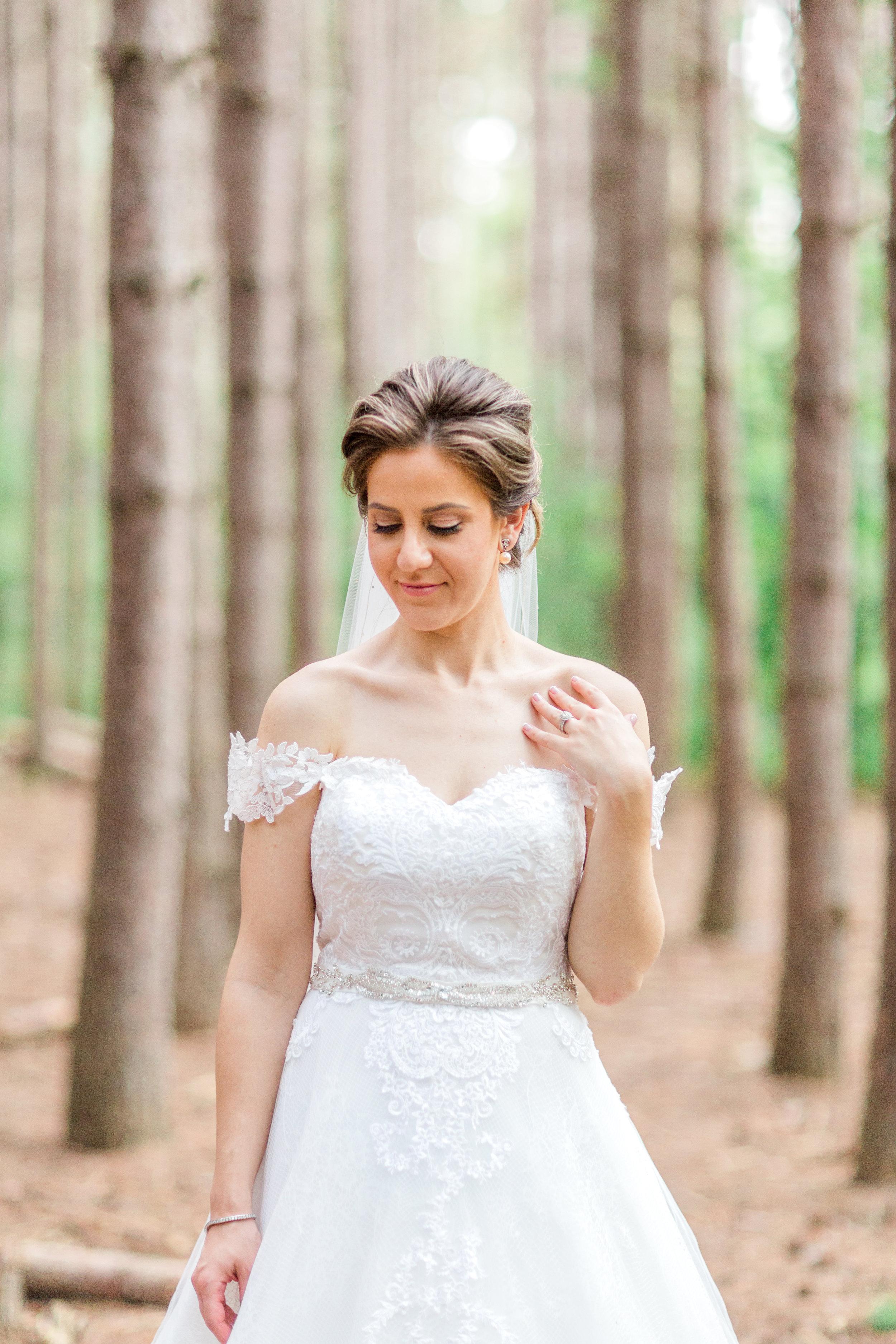 Danielle-Giroux-Amir-Golbazi-Toronto-Wedding-Photographer-Bellvue-Manor_DeLuca_1-747.jpg