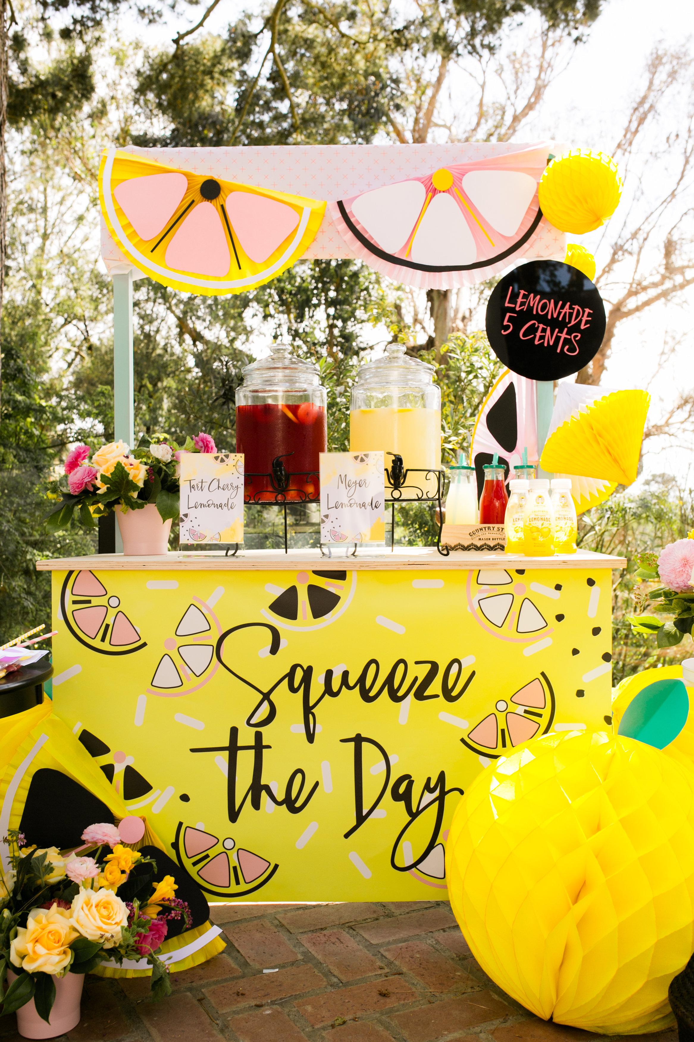 Lemonade Stand Kids Birthday Party