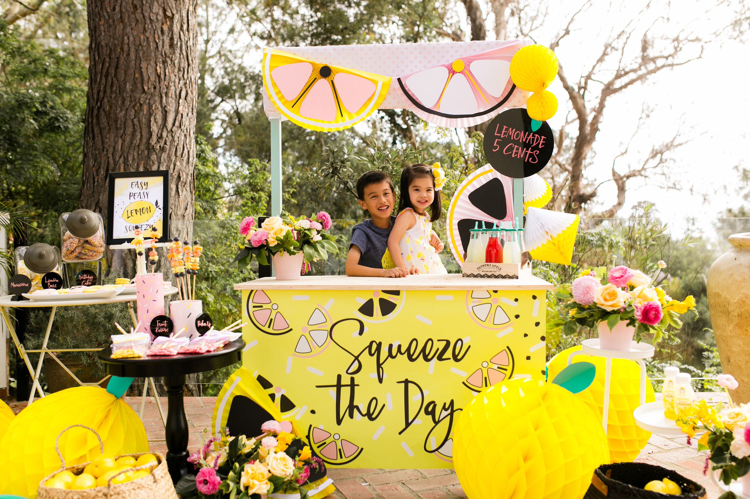 Lemonade Stand Kids Birthday party Decor
