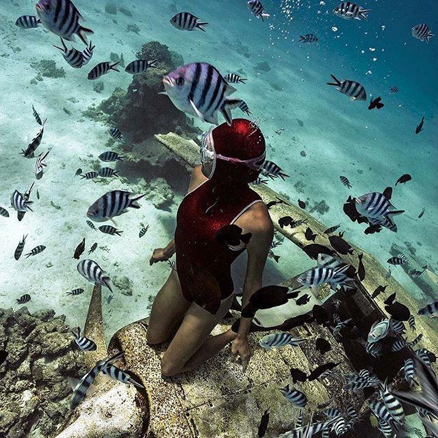 Mermaid on a wreck  #tahiti #ocean #vahine #smartshot #wreck