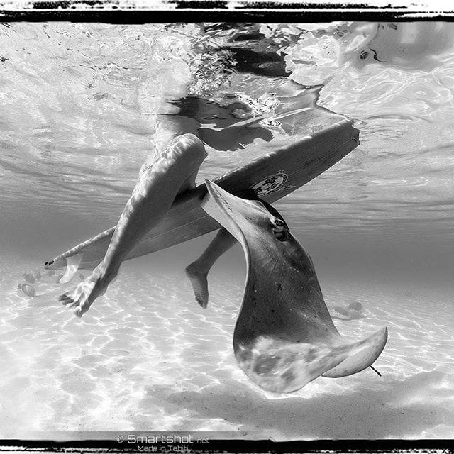 Hey ! Let's play together !  #smartshot #underwater #mermaid #tahiti #vahine #surf