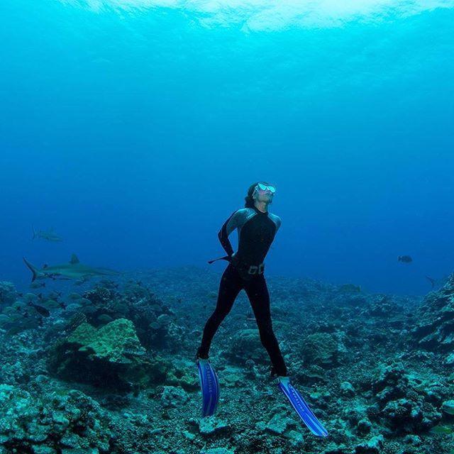 Relax and Regenerate  #smartshot #underwater #mermaid #tahiti #vahine