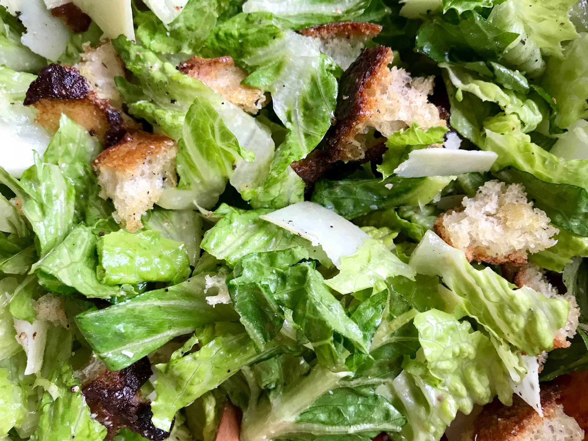 Salad From Scratch - Crisp, clean Caesar is a great antidote to all that rich, gluttonous food. It's the perfect side salad for a holiday meal.