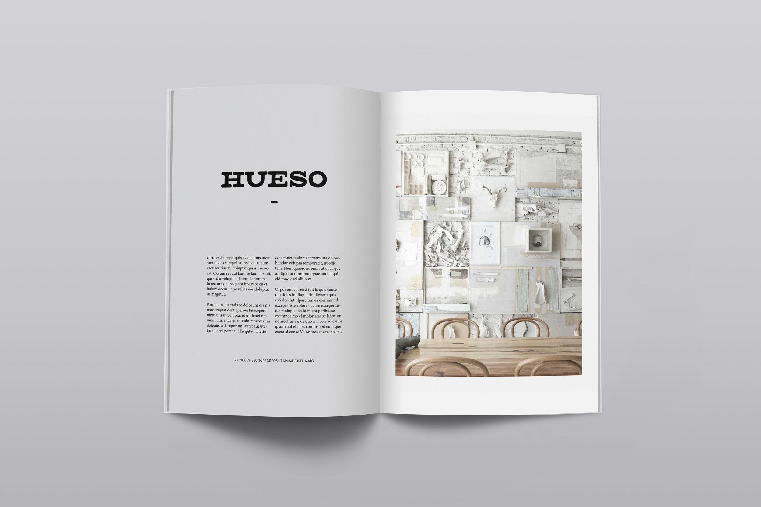 magazine-mockup_hueso.jpg