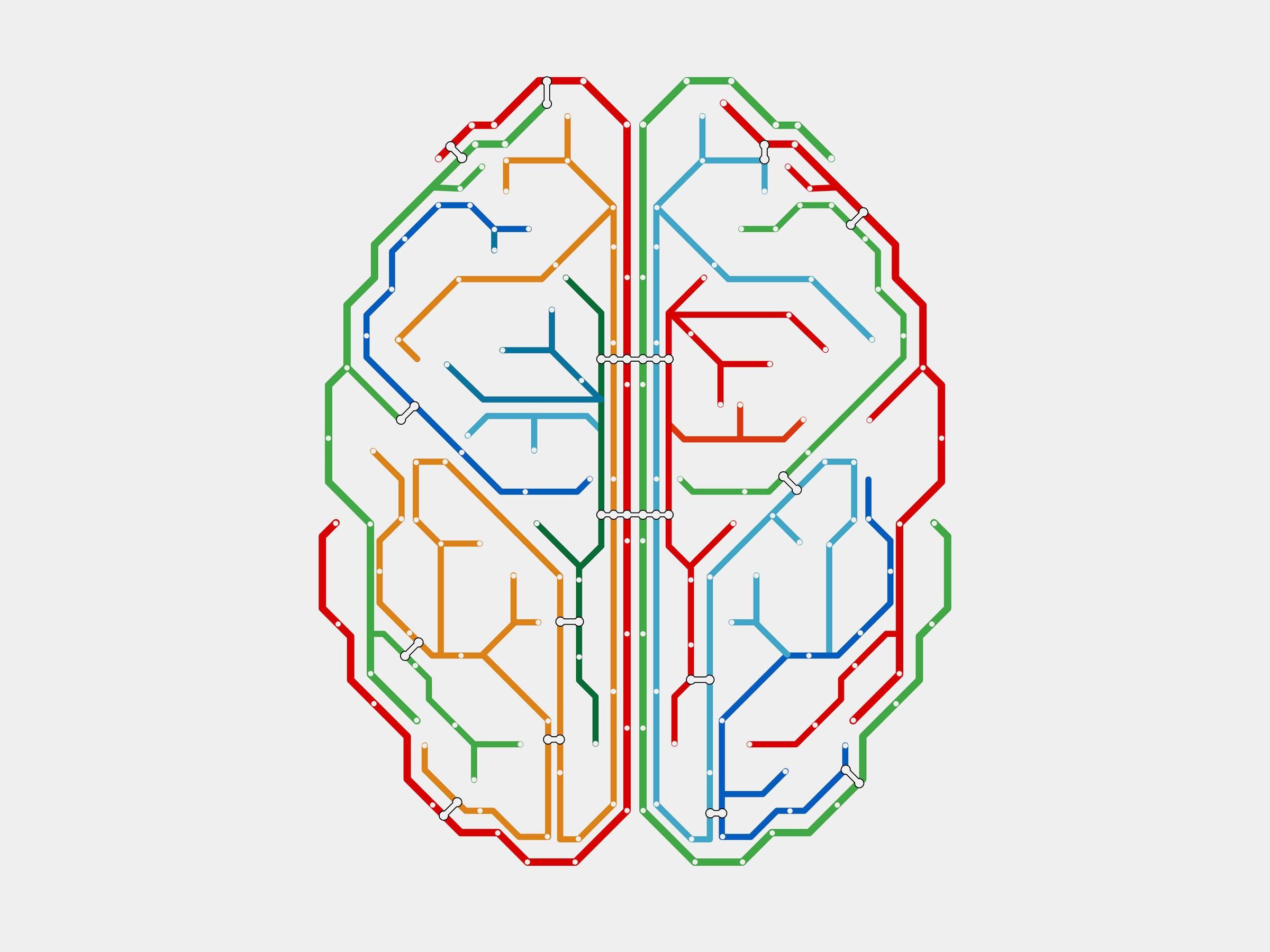 Brain-549603035-1.jpg