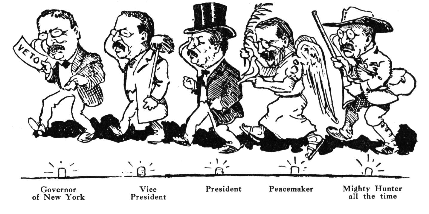 Some of the roles of Theodore Roosevelt