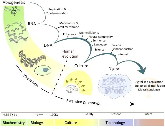 Image credit: Trends in Ecology and Evolution