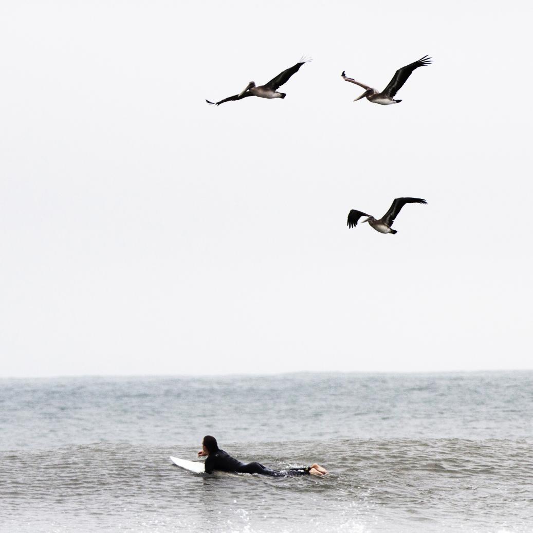 ben-zachhellmuth-surf.jpg