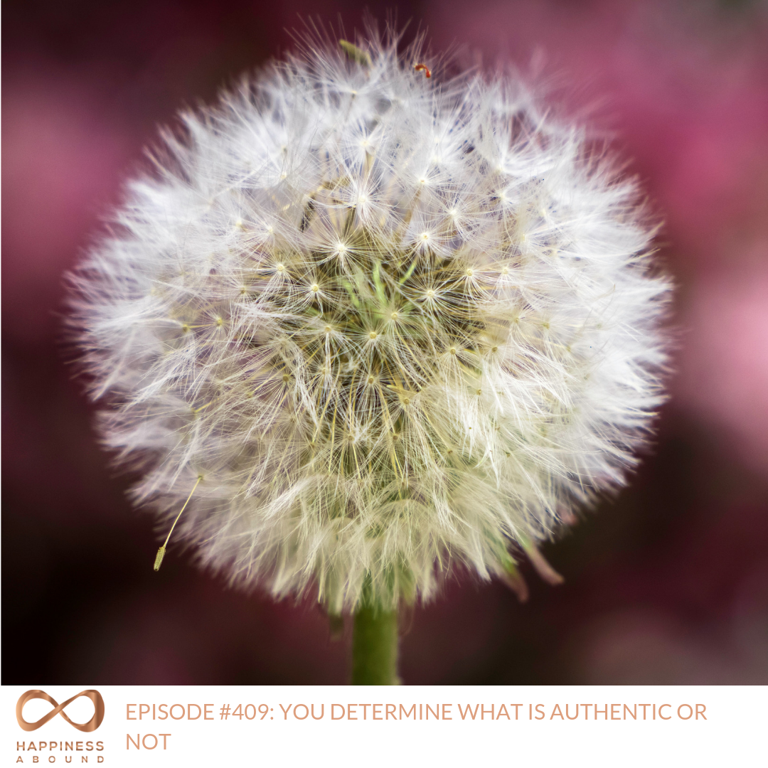 #409_ YOU DETERMINE WHAT IS AUTHENTIC OR NOT.png