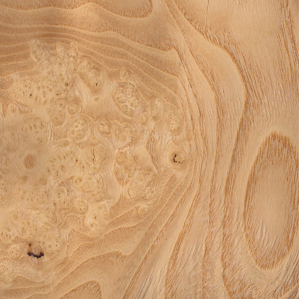 Copy of Olive Ash Burl