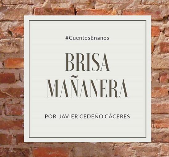 Brisa Mañanera.png