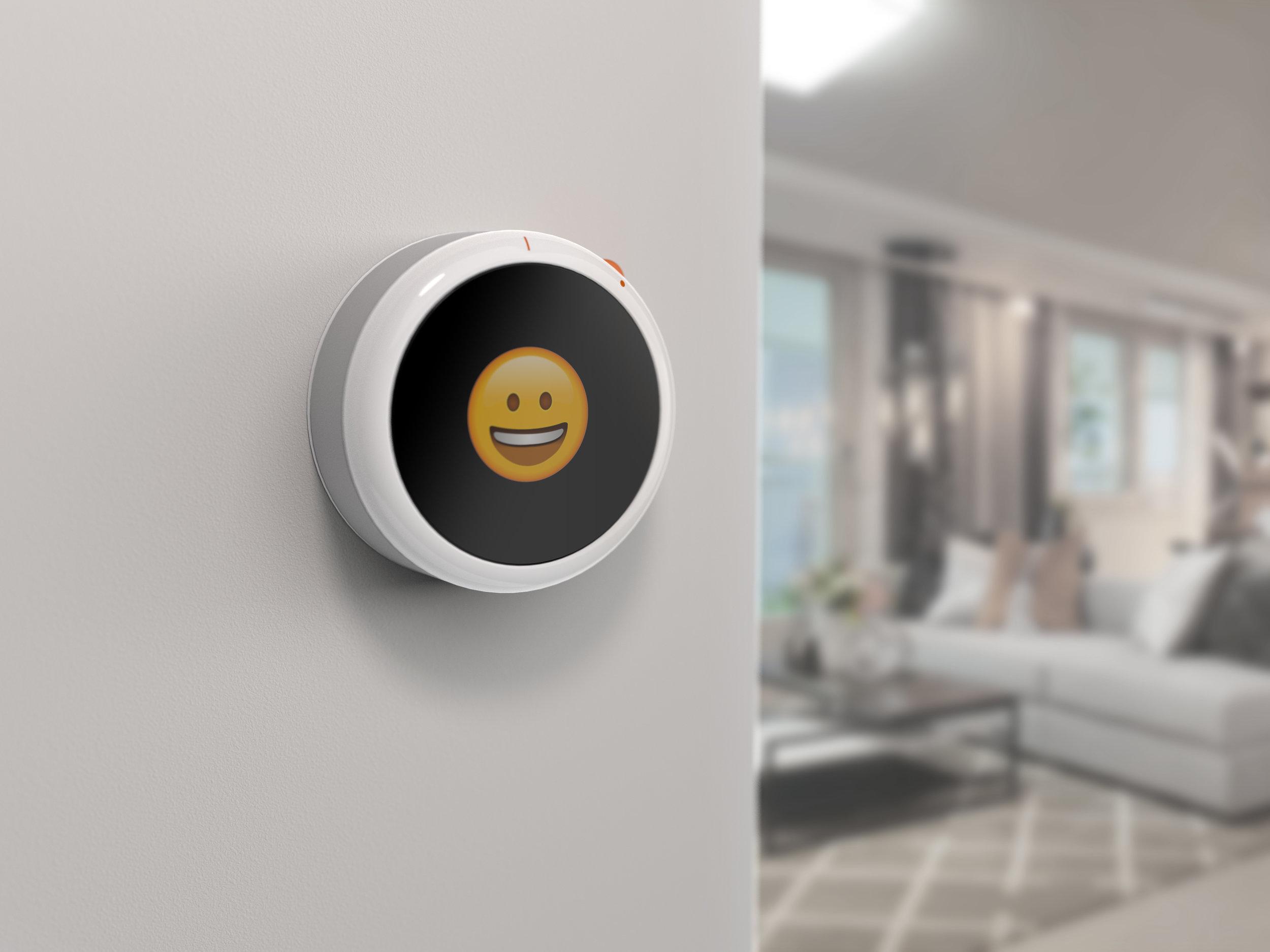 Smart Thermostat-Camera 2.45.jpg