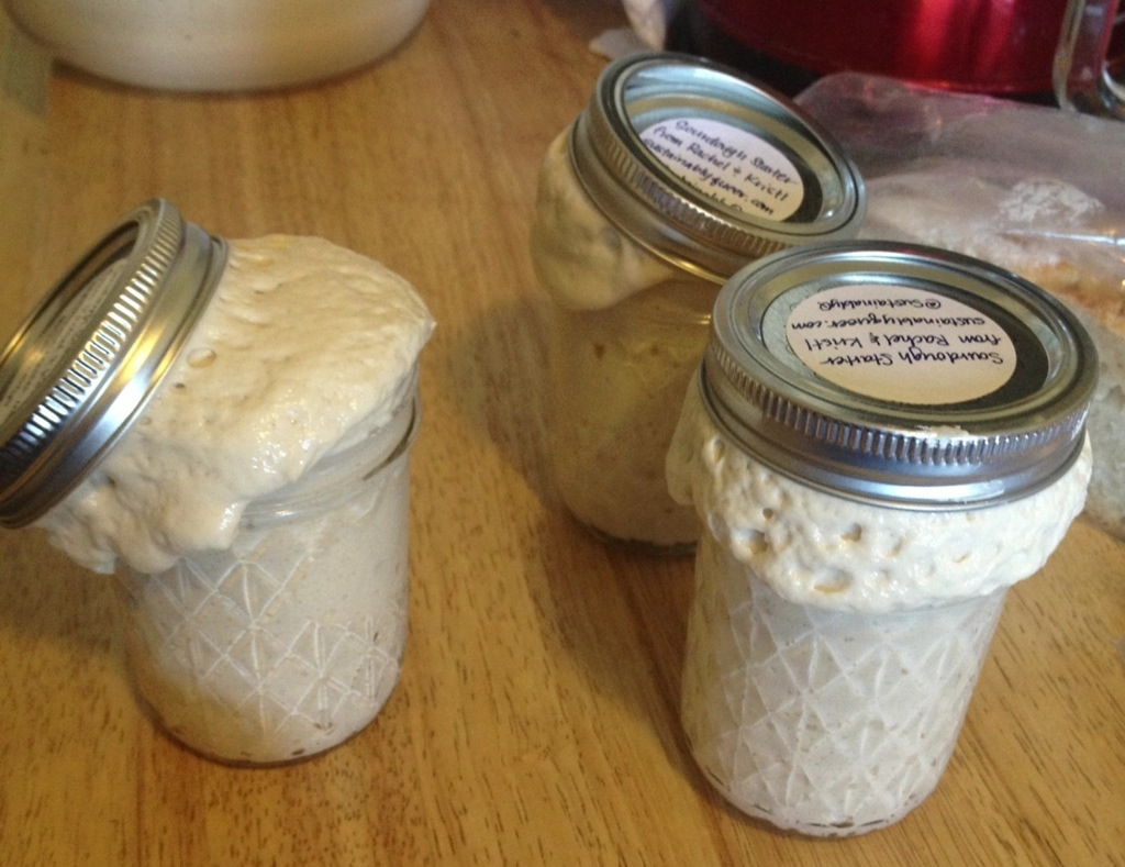 Sourdough Starter Escape