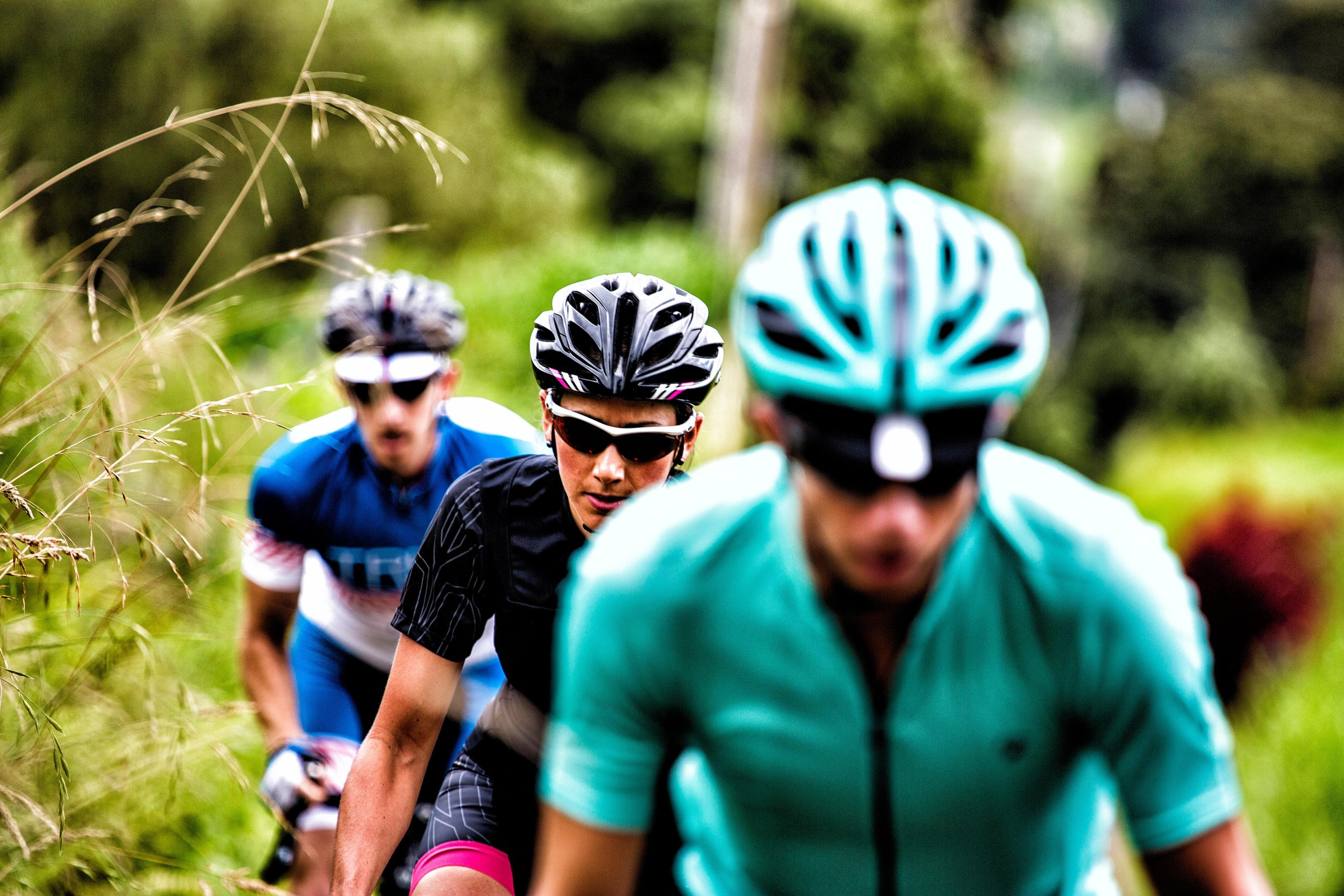 Bike Rentals    L earn More