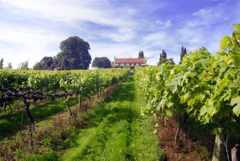 english wine.jpg