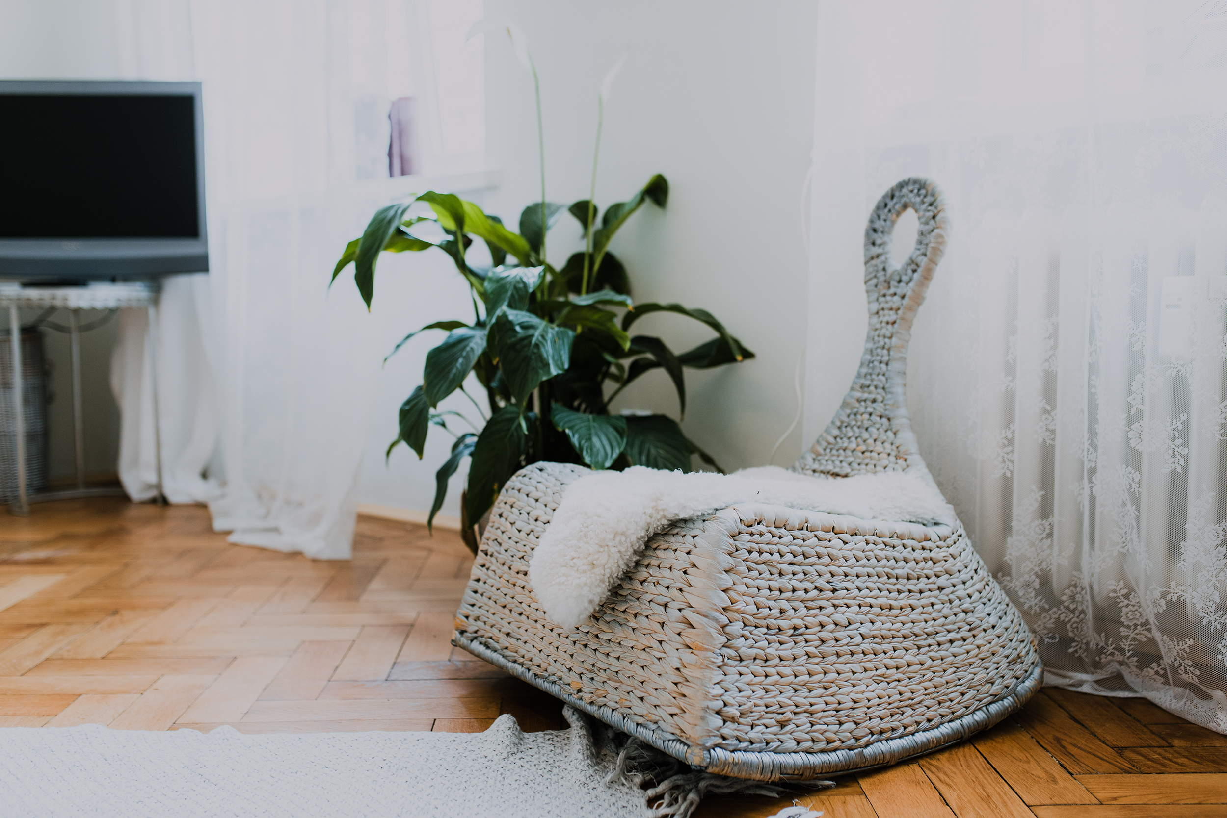 Ogarna studio comfort.jpg