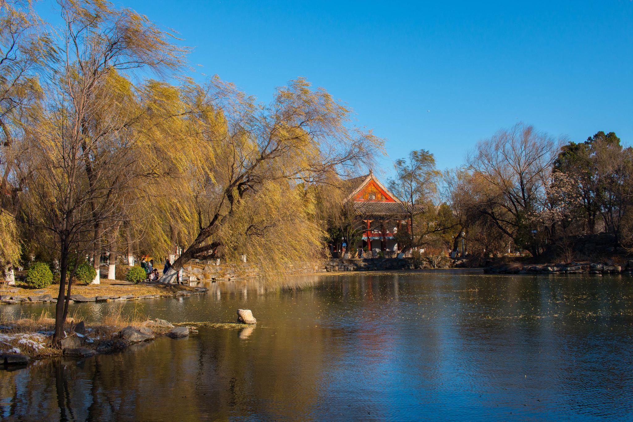 Weiming Lake at Peking University's historic campus. Photo by  LW Yang .