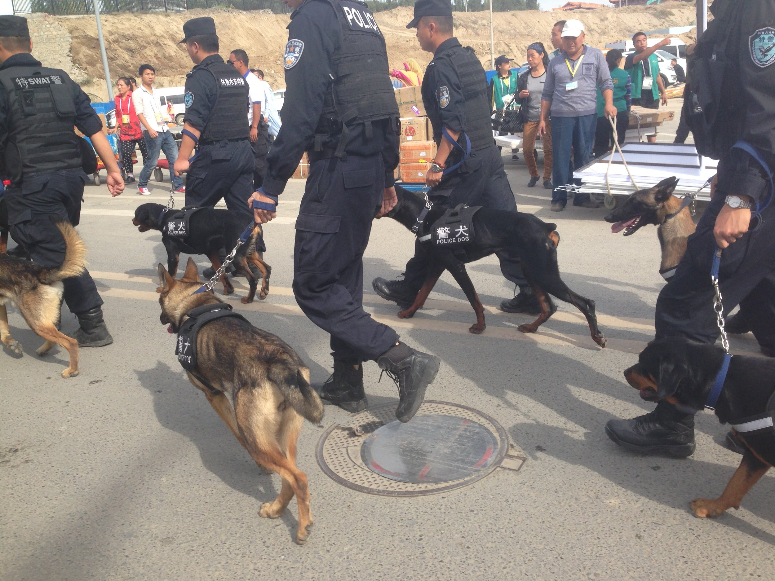 Police Tactical Unit officers and police dogs on the streets of Urumqi, Xinjiang.  Voxeros/Flickr .