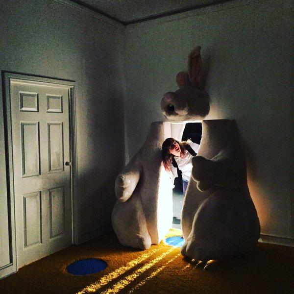 IT 2 Open rabbit (c) Jess Beck.jpg
