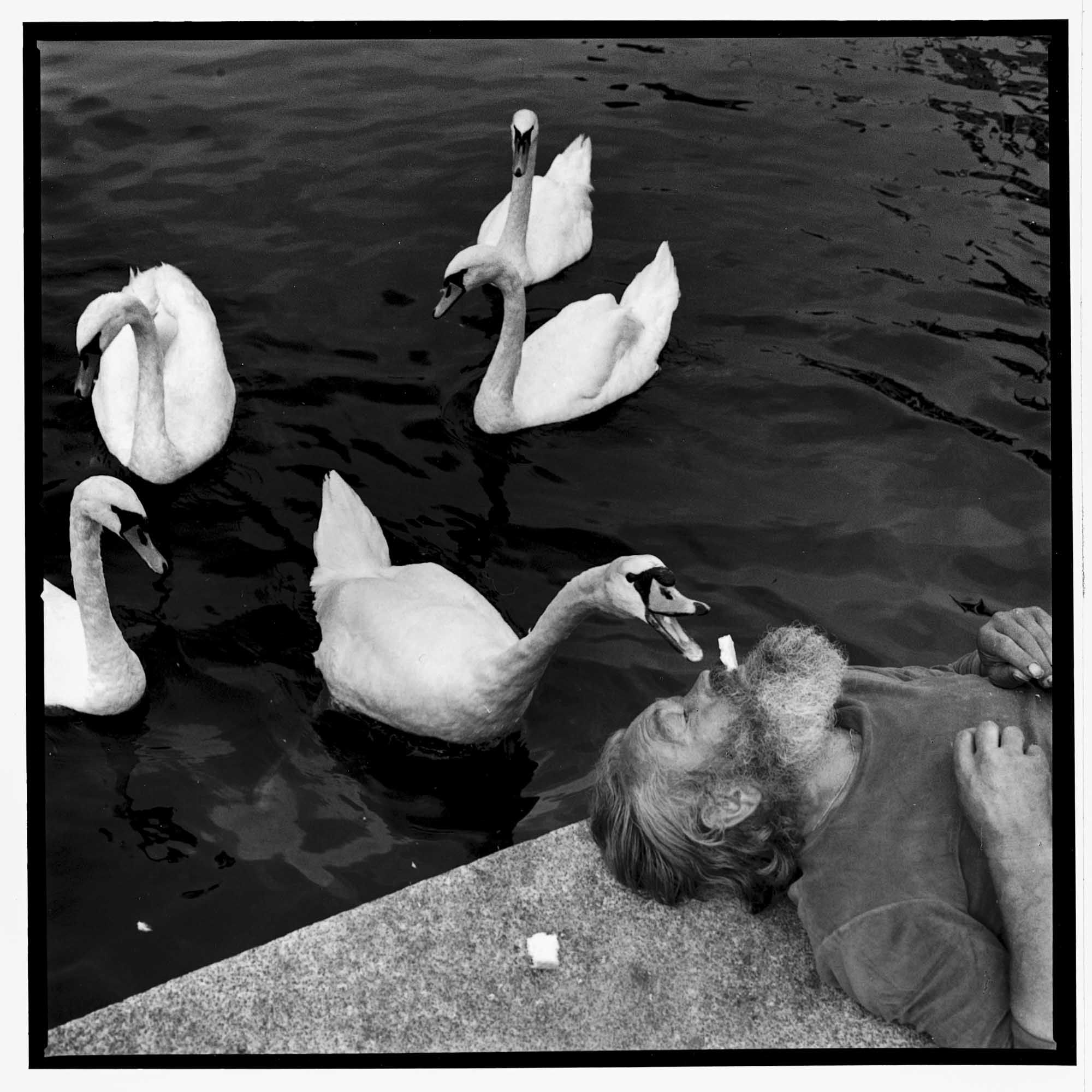 WilliamHeydt-Photographs-C3437-12.jpg