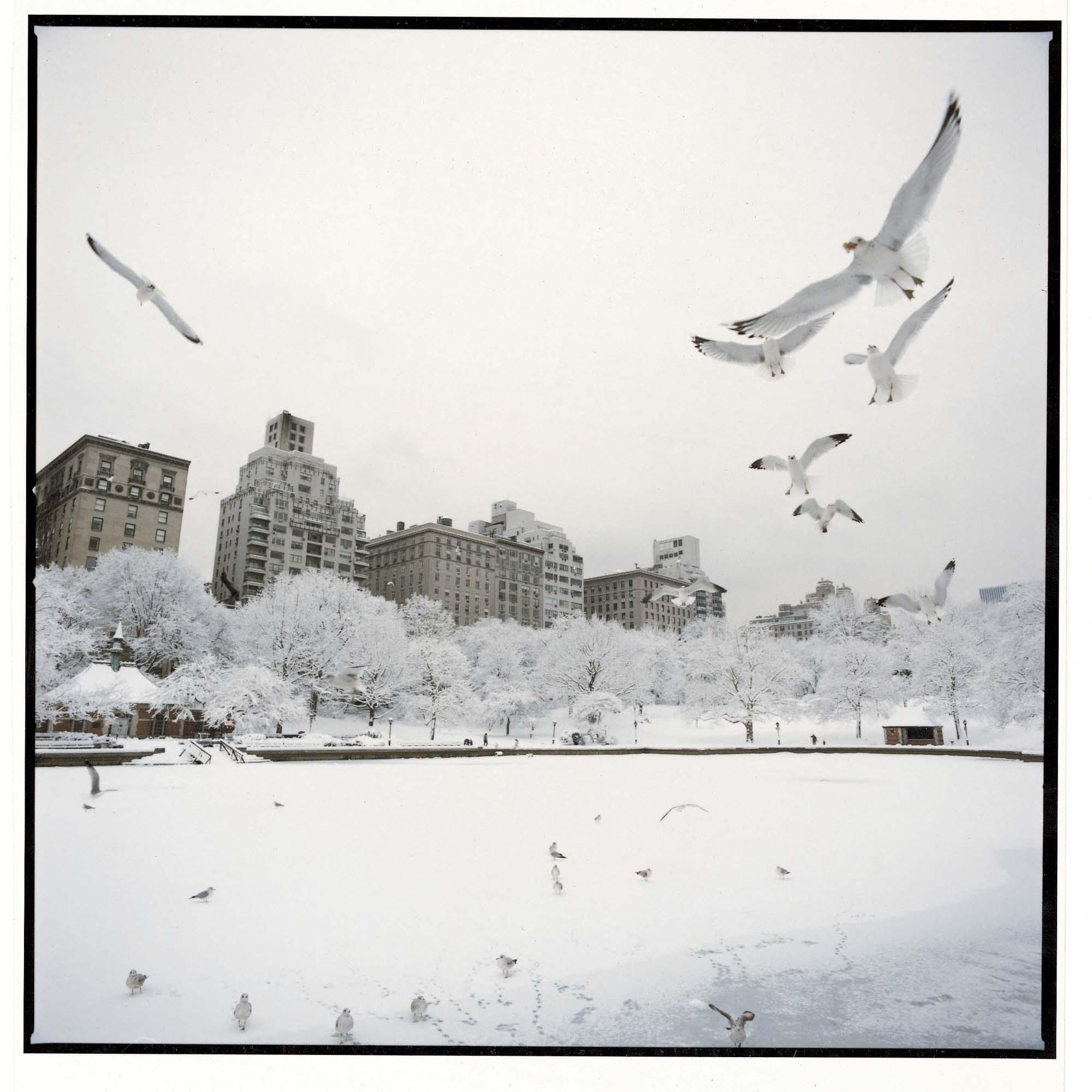 WilliamHeydt-Photographs-c3437-13.jpg