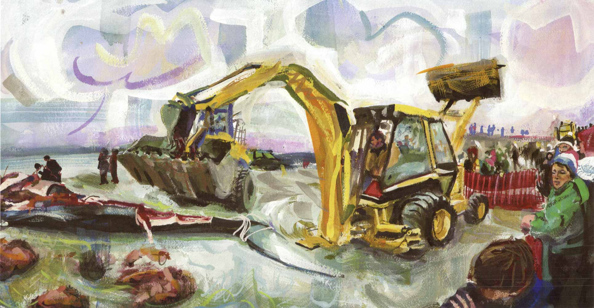 Blue whale on Second Beach, dissection with backhoe, No. 2, Winter 1998