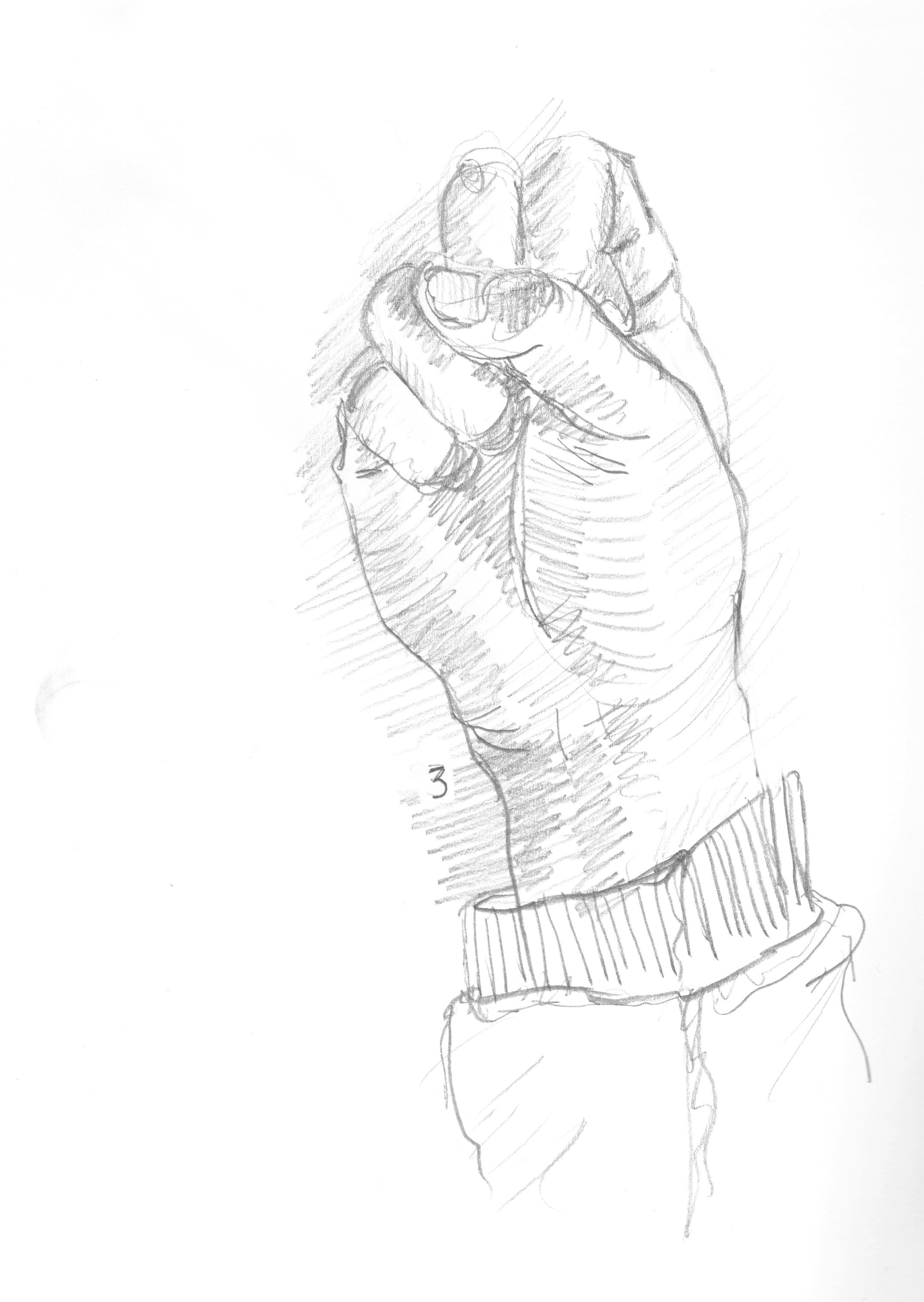 anatomy 1.jpeg
