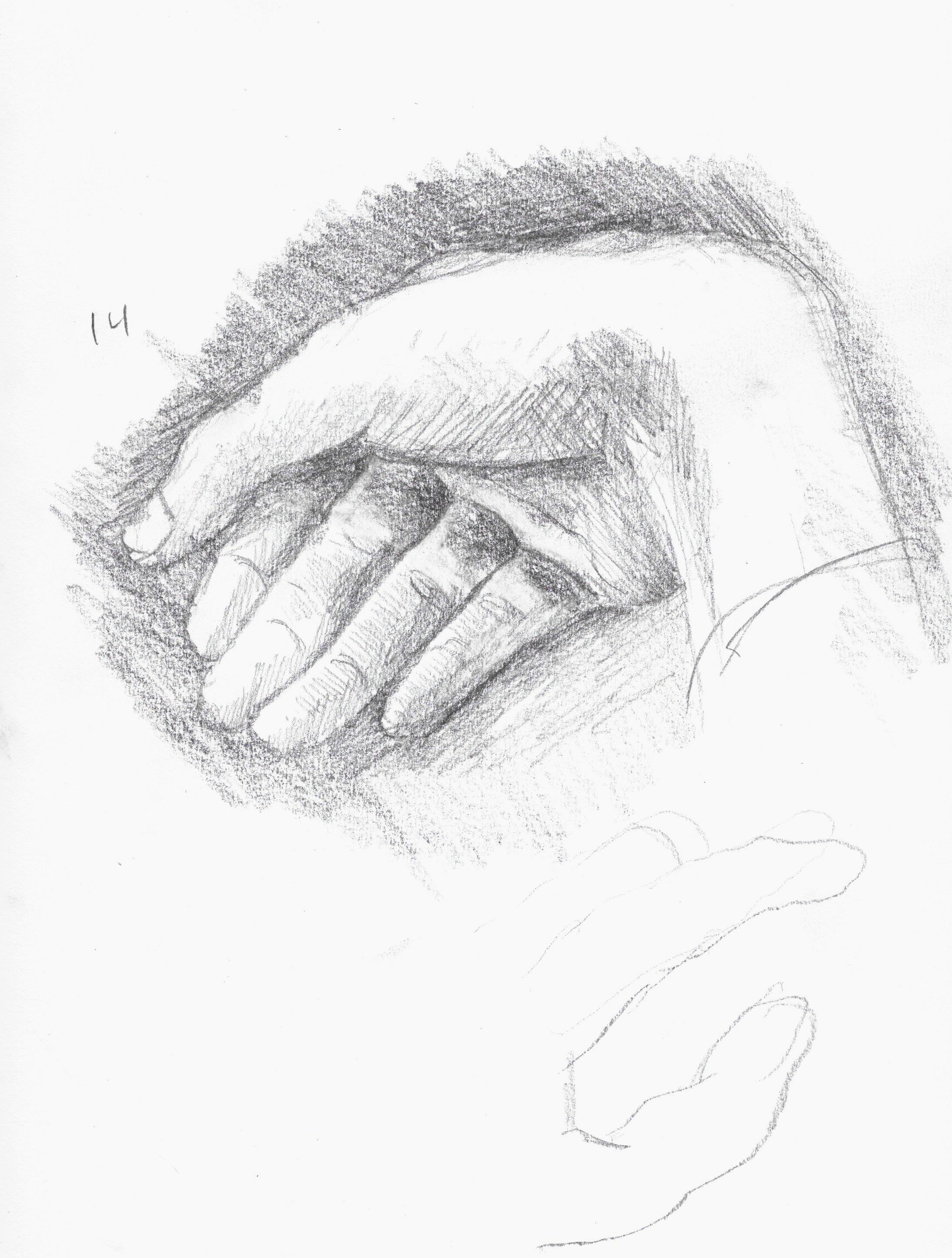 anatomy 8.jpeg