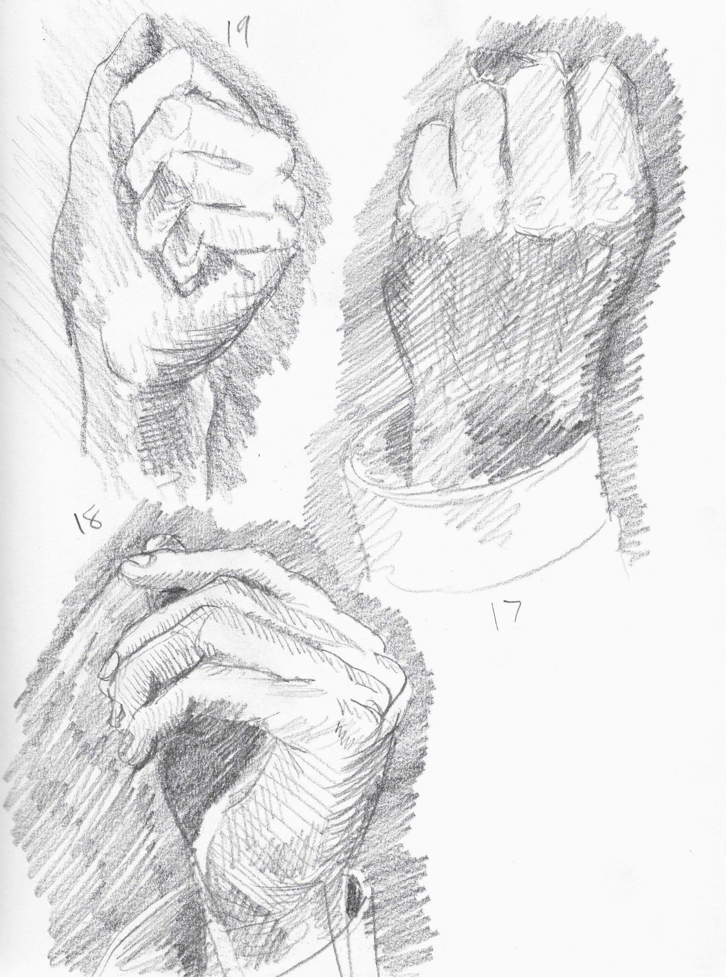 anatomy 13.jpeg