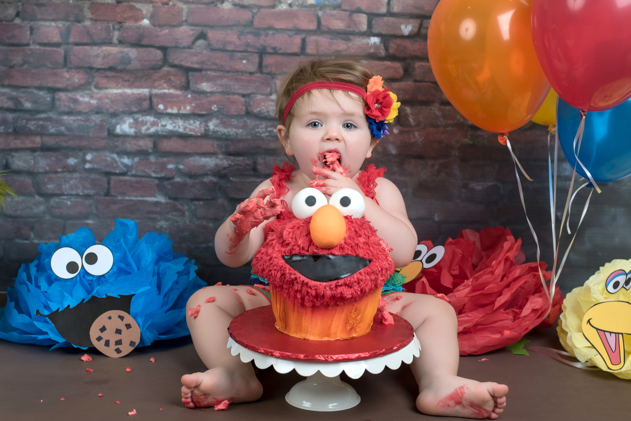 Rainbow Elmo Sesame street themed cake smash