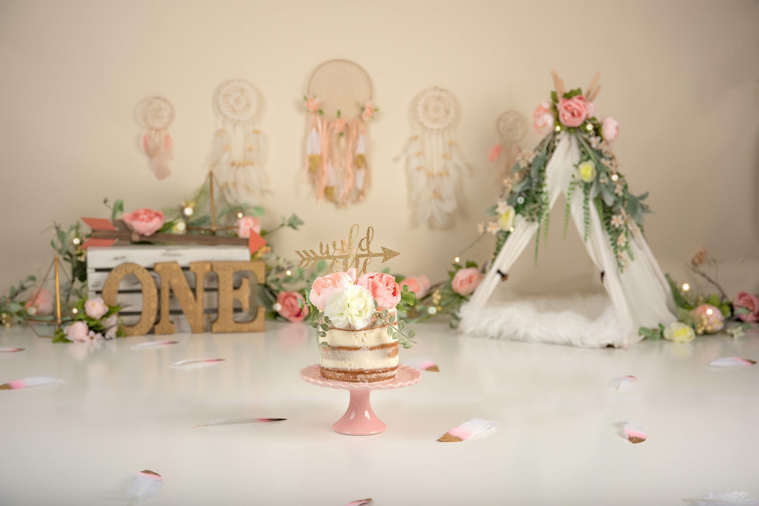 boho floral wild one cake smash dream catcher