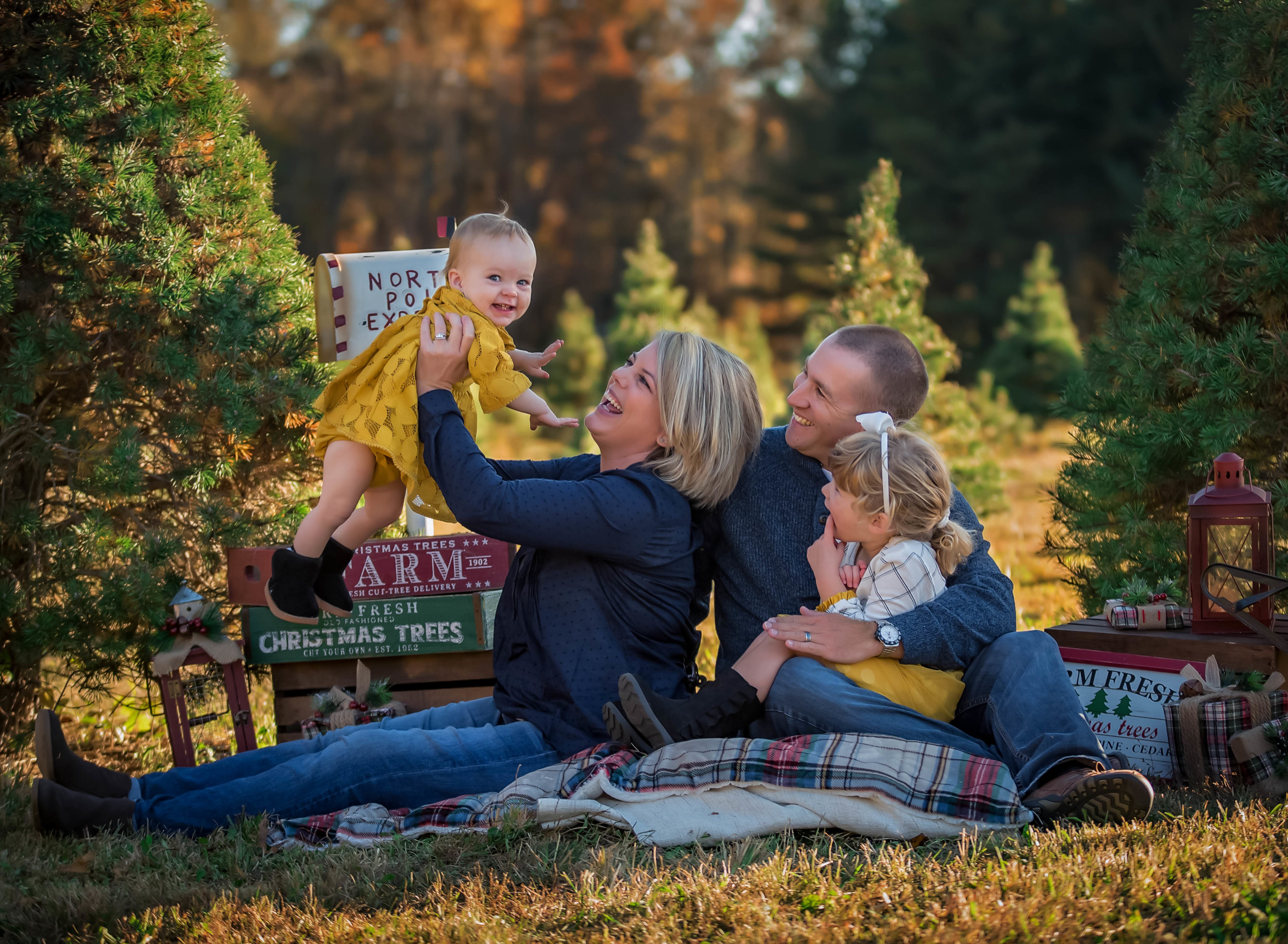 navy and yellow Family christmas holiday portrait at windy knoll tree farm