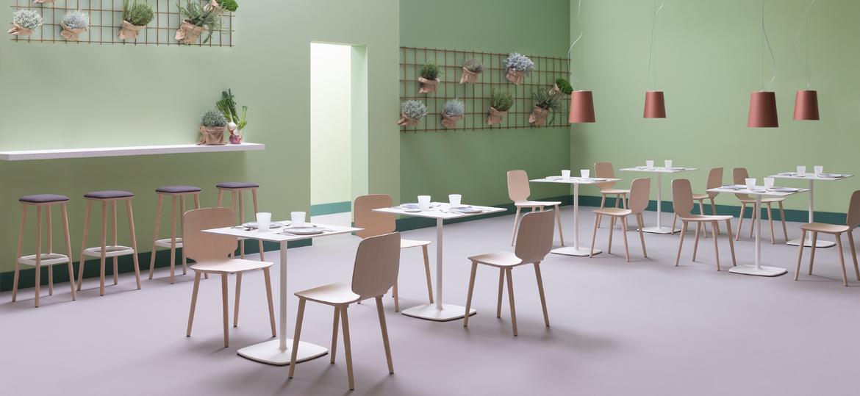 Pedrali_canteen_chair.jpg