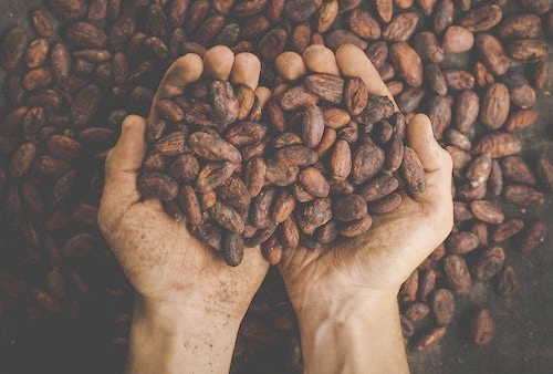 Super Foods - Every good health nut has a special place in their heart for super foods. But they are expensive, so showering them with cacao, goji, chia, or raw cashews will get you a big hug! Navitas Organicsis a good source.