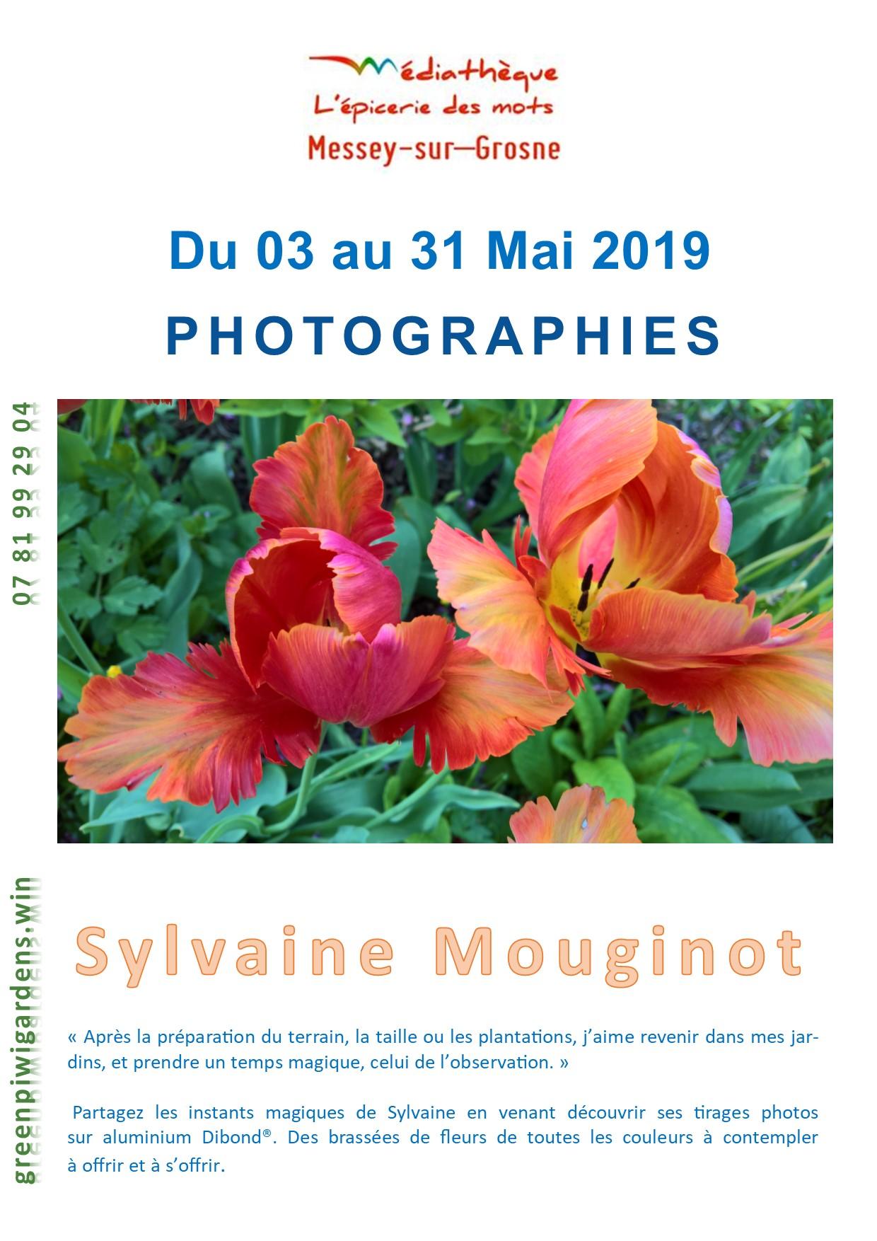 Affiche Messey Sylvaine V2.jpg