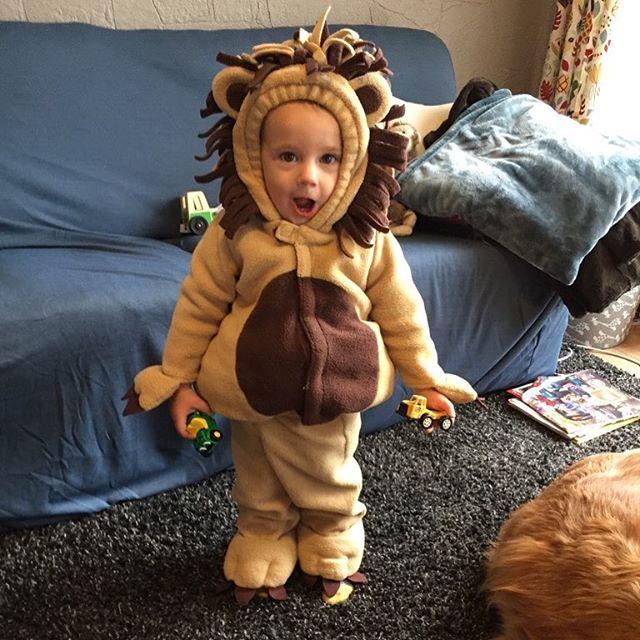 Rawr. Happy Halloween! #littlelionman
