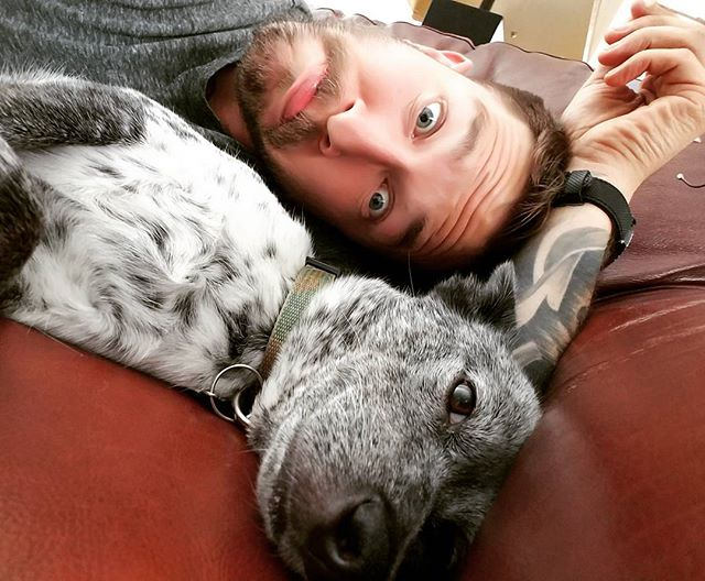 That look you get when dad won't stop taking selfies with you😯🙃😩 #prouddad #blueheeler #australiancattledog #puppiesofinstagram #dogs #selfie #dogsofinstagram #fatherdaughterday #love