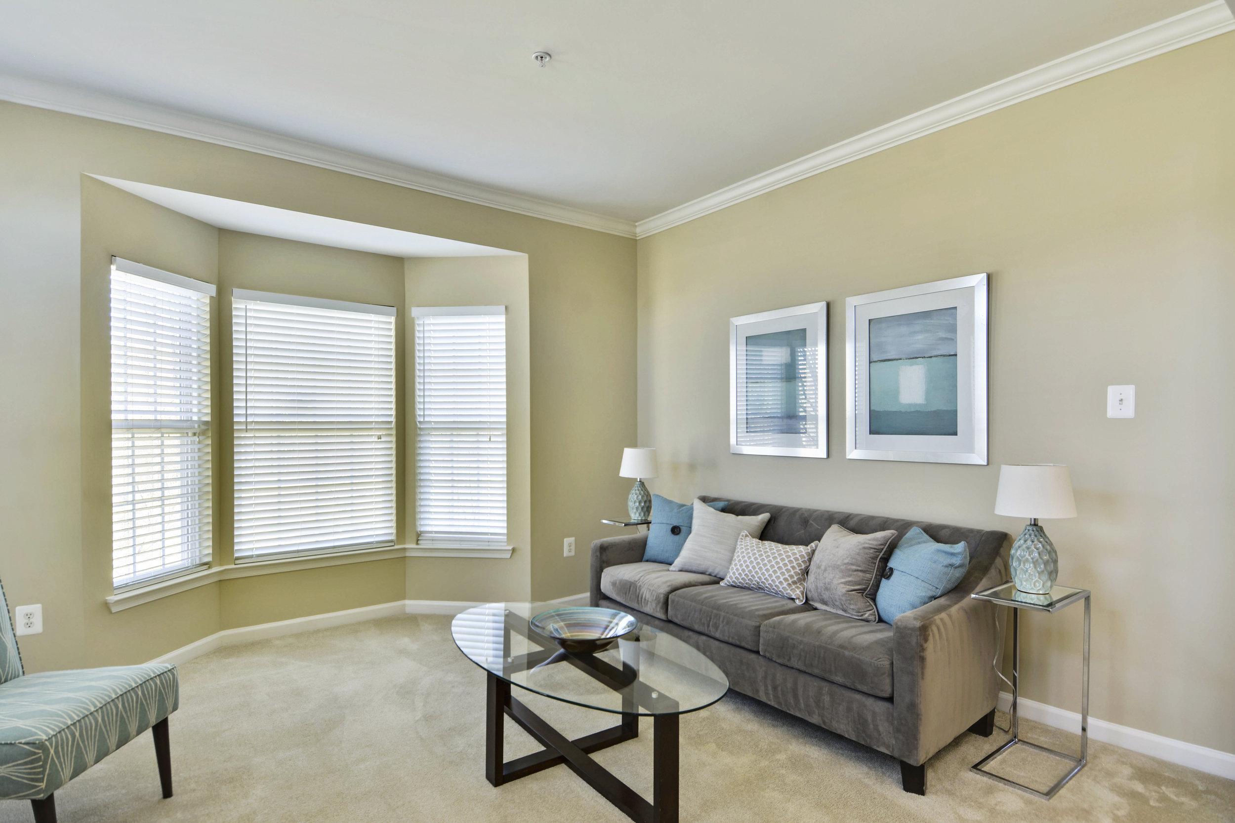 Main Level-Living Room-_DSC3195.JPG