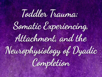 Toddler Trauma: Somatic Experiencing, Attachment, and the Neurophysiology of Dyadic Completion by Joseph P Riordan SEP, MAPS; Abi Blakeslee SEP, CMT, MFT, Ph.D, Peter A Levine Ph.D. -