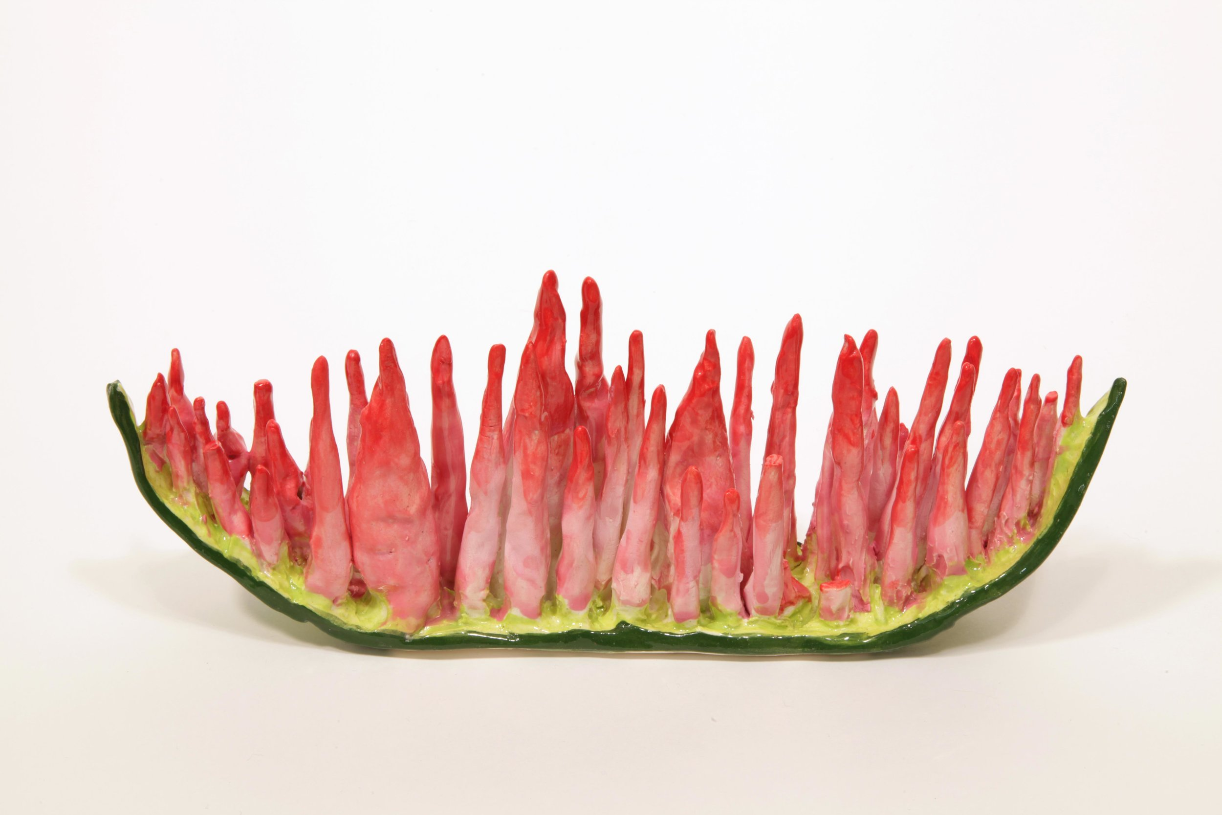 Copy of Watermelon Decay