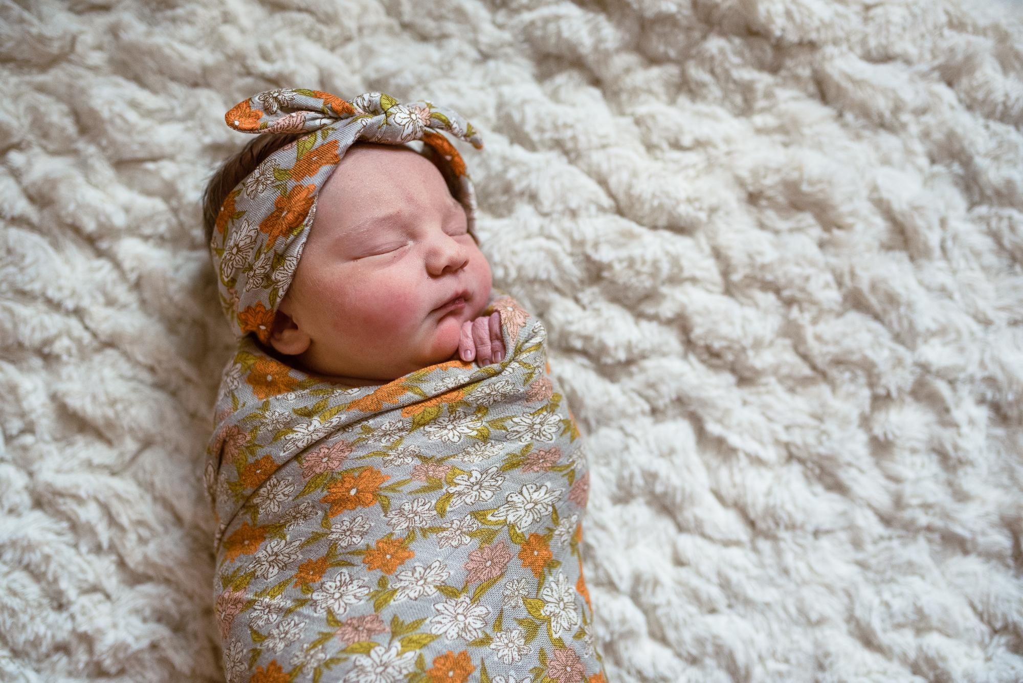 Denver+Boulder+Fresh48+Newborn+Photographer+JennyFolmanPhotography-1.jpg