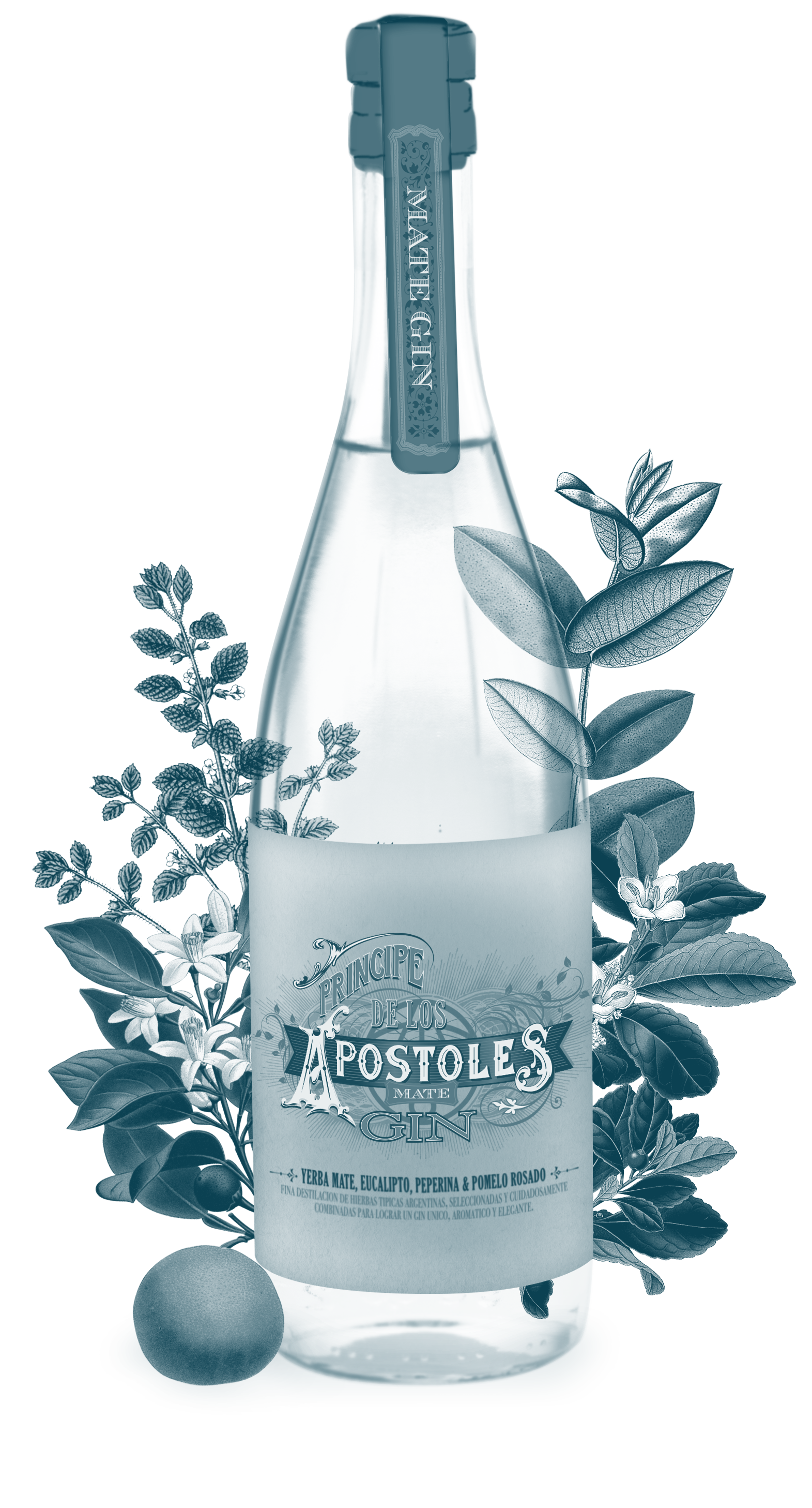 apostoles-gin.png