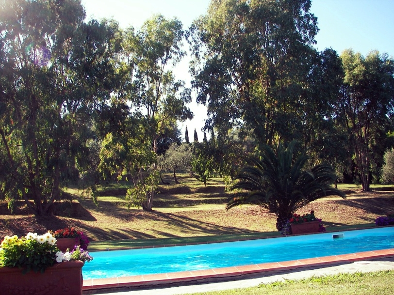 The pool is perfect for lap swimming or simply cooling off. It's surrounded by palms, eucalyptus trees, and annual flowers.