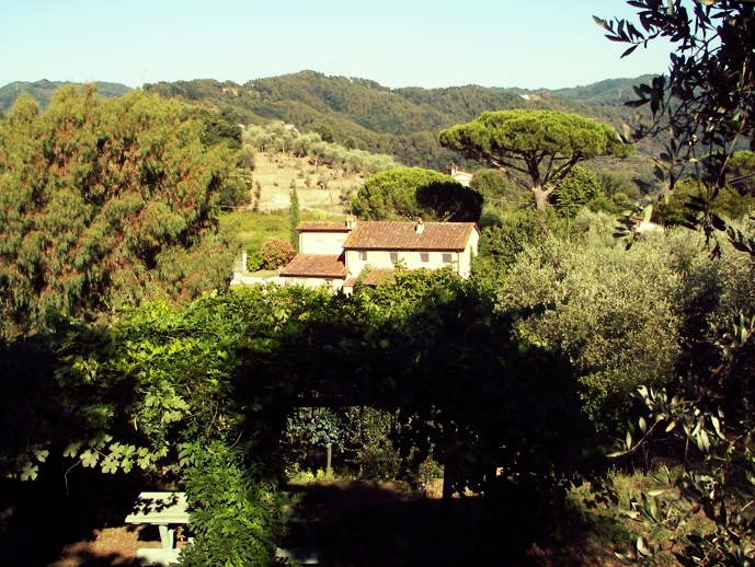 The house sits on 4 enclosed acres of terraced olive groves and gardens; there is a locking gate for privacy. It is located just 6 miles from the beaches of Viareggio, 25 miles from Pisa airport, and 25 miles from the walled city of Lucca, with its vestiges of ancient Rome and the Renaissance.
